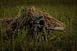Sniper using SureFire SOCOM suppressor